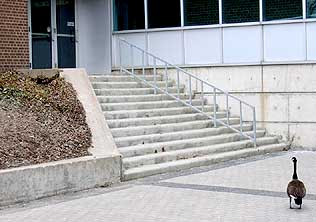 [At the foot of the steps]