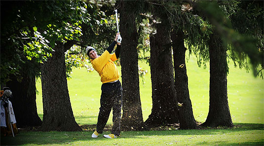 [Rank on the links]