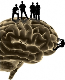 Silhouettes stand atop a large human brain.