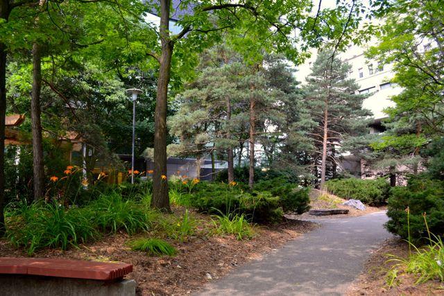 The Peter Russell Rock Garden.